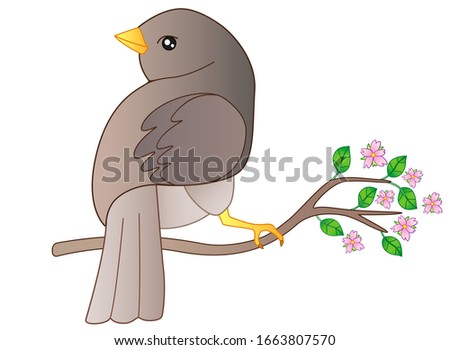 little bird sits on a flowering