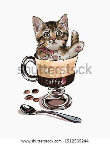 little cat in coffee cup