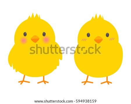 Little chicks isolated on white background : Vector image