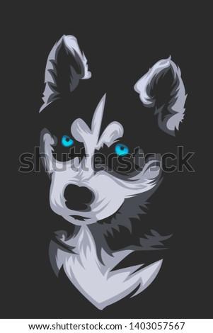 little cute siberian husky