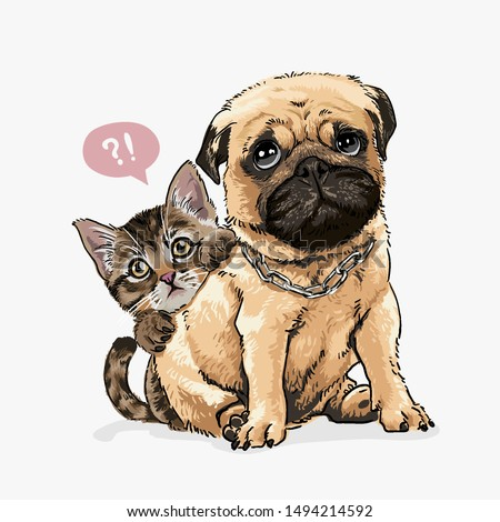 little kitten hiding behind pug