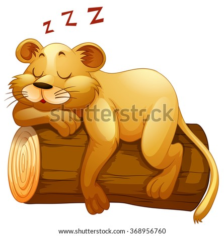little lion cup sleeping on the