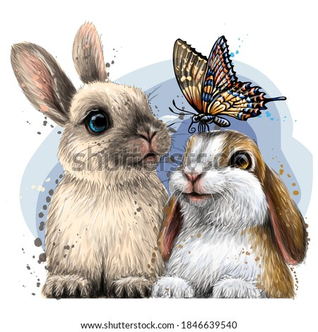 Little rabbits with a butterfly . Wall sticker. Color, artistic portrait of two cute little rabbits with a butterfly in watercolor style on a white background. Digital vector drawing
