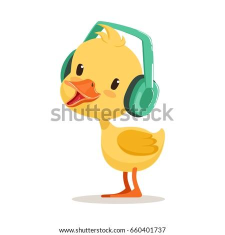 little yellow duck chick