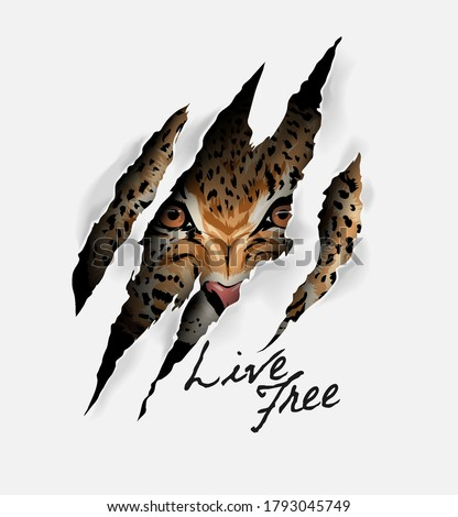 live free slogan with leopard face in claw mark illustration Foto stock ©