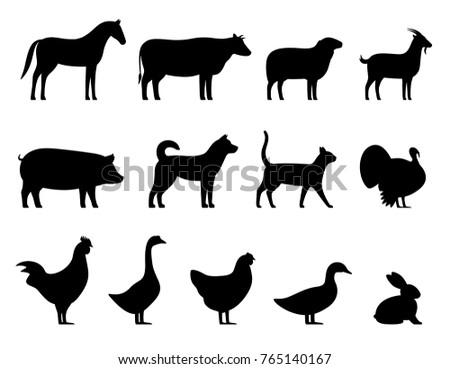 Livestock, Farm animals black icons set, vector illustration