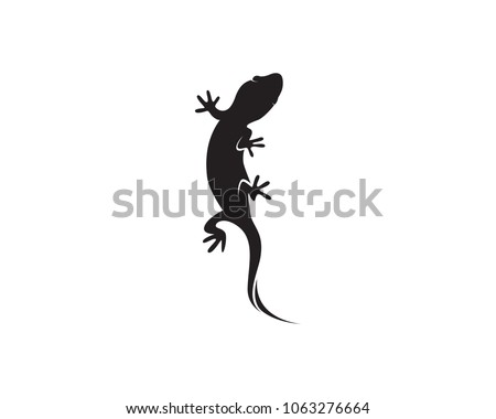 lizard chameleon gecko