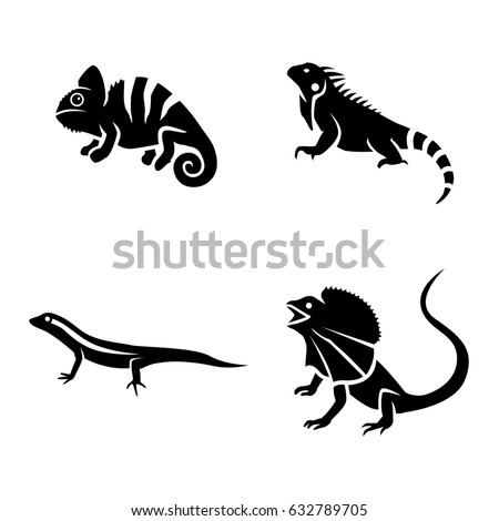 lizards vector icons