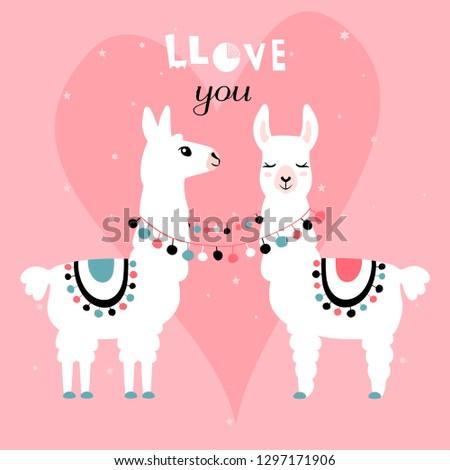 llama alpaca pair of loving