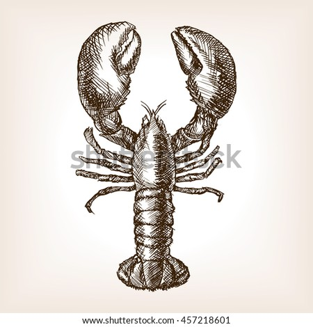 Lobster hand drawn sketch style vector illustration. Old hand drawn engraving imitation.