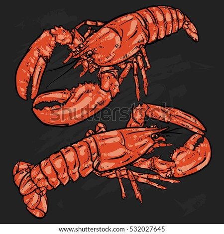 lobster with claws on a black...