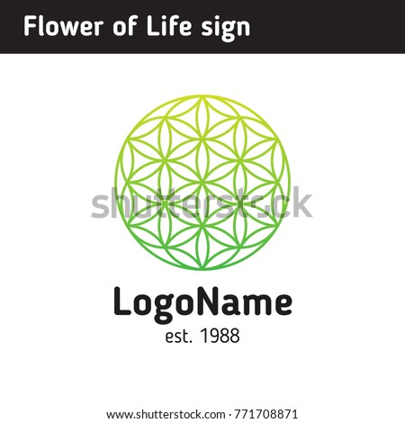 logo of a flower of life  a
