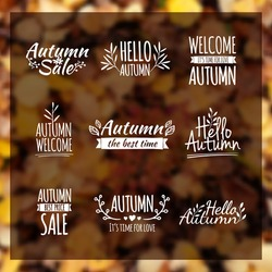Logotypes set. Autumn badges, labels, ribbons, elements, wreaths and laurels, branches. Hand drawing. Vintage vector on blurred background leaf litter.