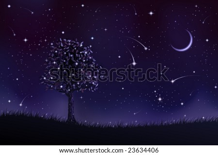 lone tree at night  other
