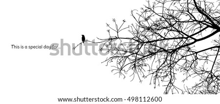 lonely bird stands on a branch