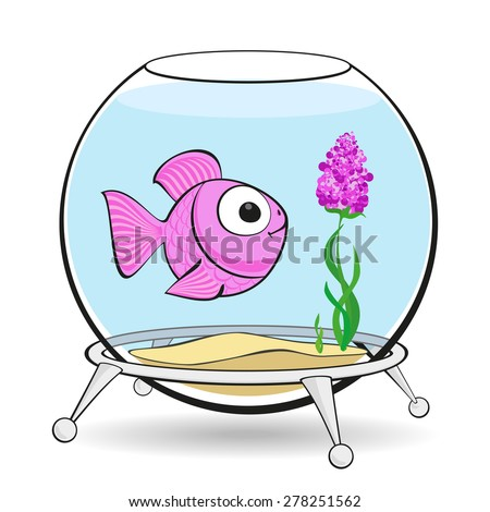 lonely pink fish is looking at