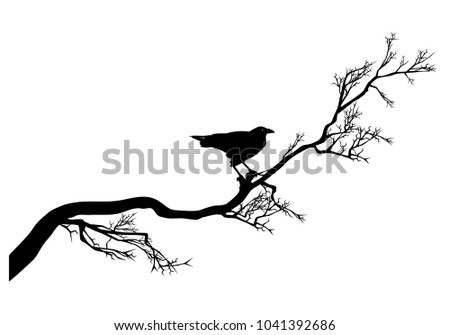 long twisted tree branch and raven bird black silhouette - halloween theme design vector