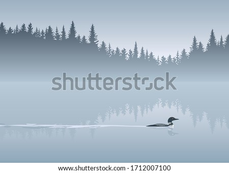 Loon crossing calm lake vector background Stockfoto ©