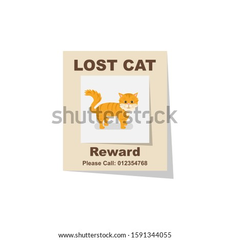 lost cat reward for the find
