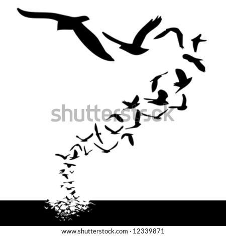 stock vector : lot of birds flying; silhouette style illustration