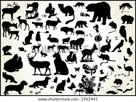 lots of animals  vectors with animal scent