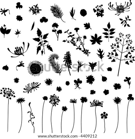 lots of leaf - stock vector