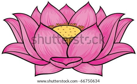 stock vector Lotus flower
