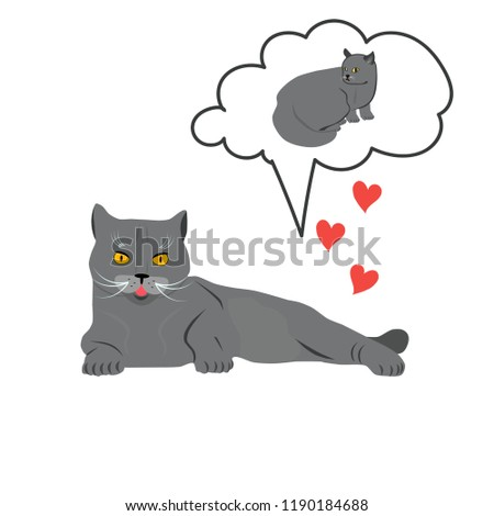 love of two cute cats breed