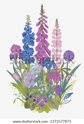 Lovely Garden. Flowerbed. Vintage illustration. Spring and summer garden flowers