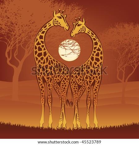 loving giraffes on african sunset, vector