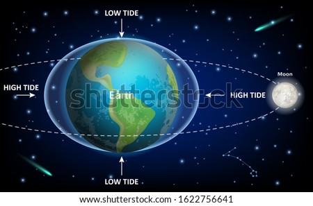 Low and high tides caused by the Moon, vector education diagram. Space exploration, geography, physics and astronomy science infographic template.