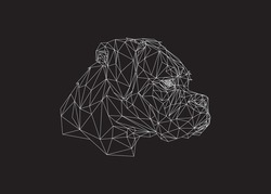 Low poly art of a dog head in white color wireframe. Vector animal triangle geometric illustration. Abstract polygonal art. With black color background.
