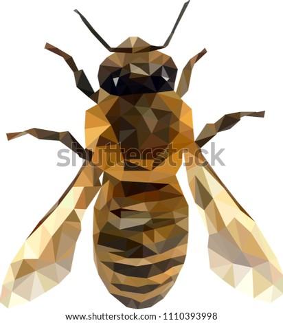Low poly bee, Bee from triangles, vector graphics honeybee