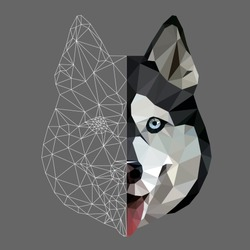 Low poly triangular and wireframe  husky dog face on grey background, symmetrical vector illustration EPS 10 isolated.  Polygonal style trendy modern logo design. Suitable for printing on a t-shirt.