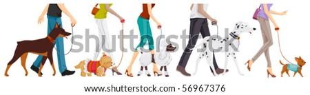 Lower Body of People walking Dogs - Vector