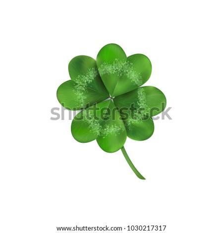 Lucky four leaf clover. Isolated on white illustration. St Patricks day symbol. Clover vector logo.