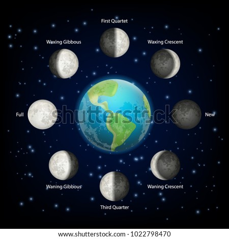 lunar phase icon set vector