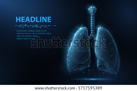 Lung. Abstract vector 3d lungs isolated on blue background. Human health, respiratory system, pneumonia illness, biology science, smoker asthma, healthcare concept. Internal organ anatomy illustration
