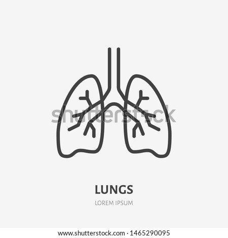 Lungs flat line icon. Vector thin pictogram of human internal organ, outline illustration for pulmonary clinic.