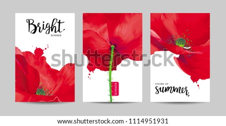 luxurious bright red vector