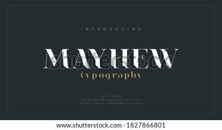 Luxury alphabet letters font. Classic Modern Lettering Minimal Fashion Designs. Typography fonts regular uppercase and lowercase. vector illustration