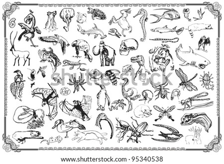 Luxury collection of ANIMALS of all kinds. Hand drawn with black marker with a sharp point - and converted to vector curves. (The bitmap is in my portfolio as well.)