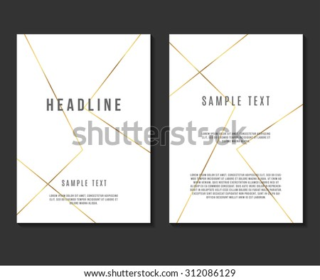luxury minimalism design vector