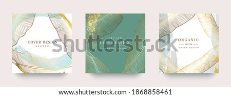 Luxury Social media stories and post template vector set. Tropical and botanical warm earth tone square cover background collection. Foto stock ©