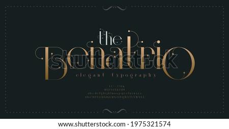 Luxury vintage alphabet letters font and number. Typography elegant classic lettering serif fonts decorative wedding retro concept. vector illustration