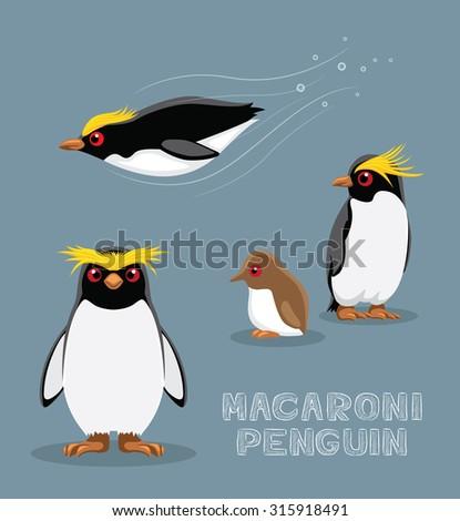 macaroni penguin cartoon vector