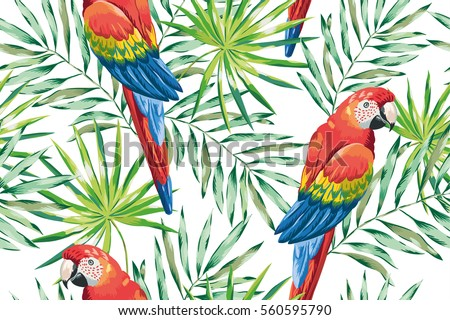 macaw parrots with green palm