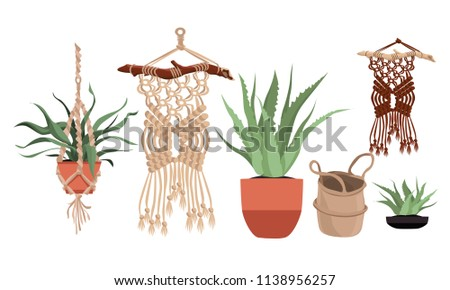 Macrame plant hangers in scandinavian interior. Vector stylish elements design. Great for gardening magazines , flower store or home poster. Vector illustration.