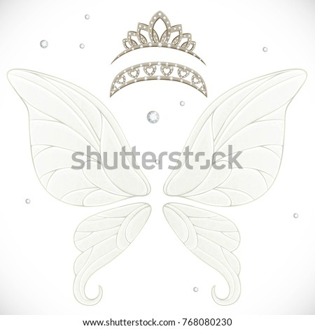 magic fairy wings with two