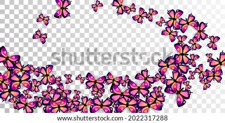magic purple butterflies